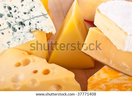 Big group of cheese - stock photo