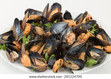 big group steamed fresh mussels on white plate - stock photo