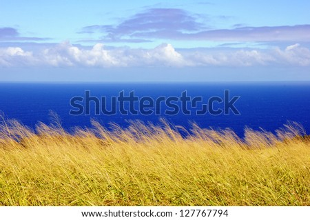 big island landscape along Hwy 19 - stock photo