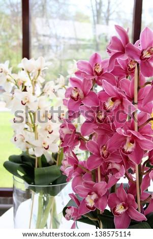 Big mix of amazing flowers in vases - stock photo