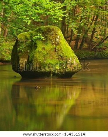 Big mossy sandstone boulders in water of mountain river. Clear blurred water with reflections. Gulch covered beeches and maple trees with first colorful leaves, rain drops on light green fern.  - stock photo