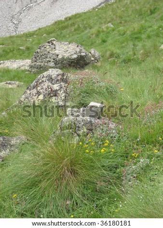 Big mountain, beauty view and climbing man in polish mountain - stock photo
