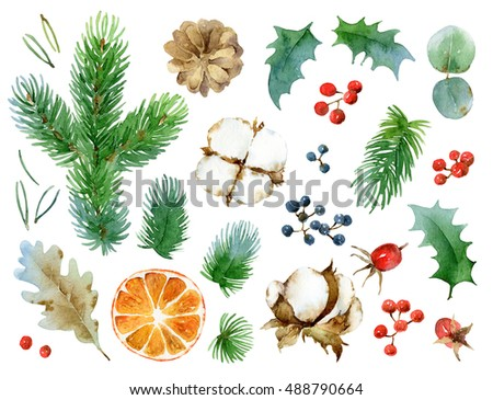 Big New Year's set isolated design elements. The leaves and berries, pine cones, twigs, orange, cotton. Watercolor illustration.