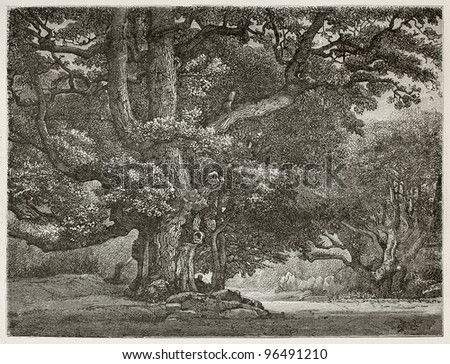 Big oak know as Le Charlemagne in Fontainebleau forest, France. Created by Desjobert, published on Le Tour du Monde, Paris, 1867 - stock photo