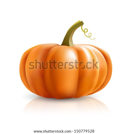 big orange pumpkins on white background, bitmap copy