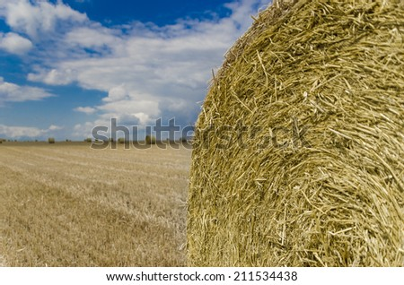 Big package on yellow field - stock photo