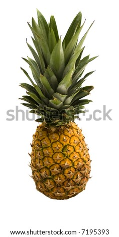 Big pineapple isolated with white background
