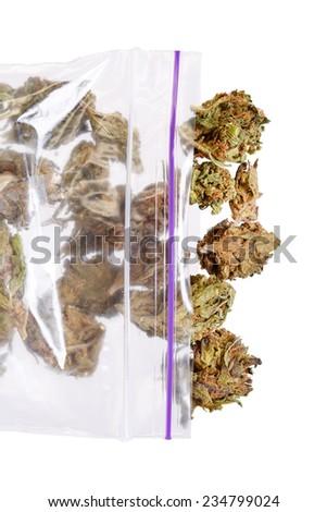 Big plastic bag of weed or marijuana - stock photo