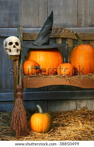 Big pumpkin with black witch hat on bench for Halloween - stock photo