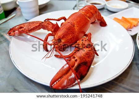 Big red boiled lobster on a white plate served  - stock photo