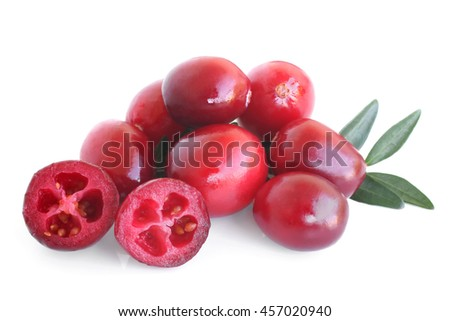 Big ripe cranberries with leaves on white background - stock photo