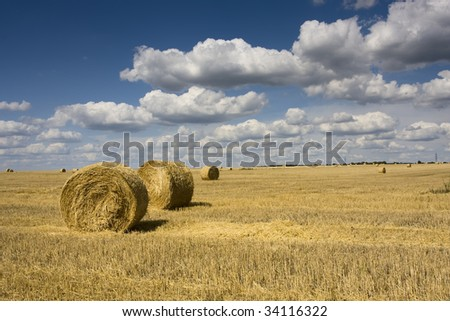 big round bale of straw in the meadow