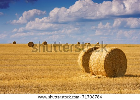 big round bales of straw in the meadow - stock photo