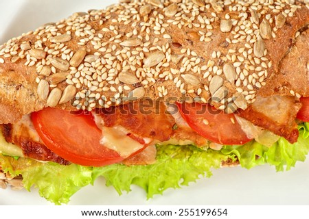 Big sandwich closeup with meat and vegetables - stock photo