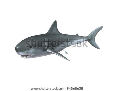 Big shark - stock photo