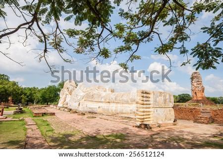 Big sleeping buddha with branch foreground at wat Lokayasuttharam in Ayuthaya, Thailand. - stock photo