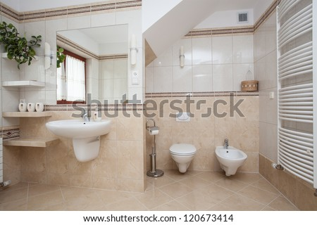 Big spacious bathroom interior, wc and bidet - stock photo