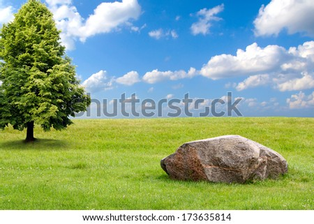Big stone and tree on a green grass hill  - stock photo