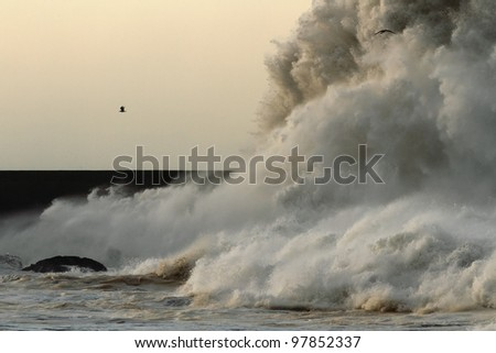 Big stormy waves crashing over Portuguese Coast