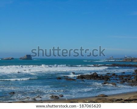Big Sur beach on the Pacific Ocean in California USA