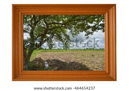 Big tree and field image in teak frame