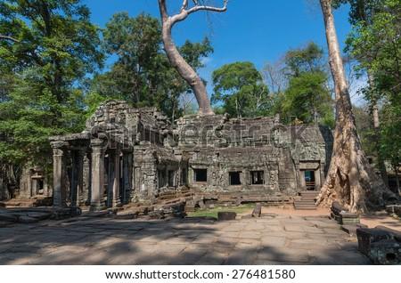Big tree on the ancient Prasat Ta Phrom, Angkor Wat, Cambodia - stock photo