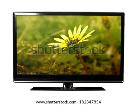 big tv with flowers - stock photo