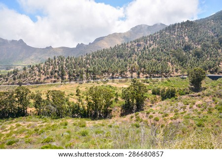 Big Valley in Tenerife , Canary Islands, Spain