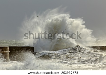 Big waves in a sunny storm. Portuguese north coast.