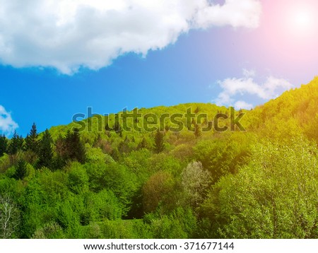 big white cloud over the mountains covered with the green wood in sun beams. The mountain woods, the blue sky and clouds in the Carpathians, Ukraine. sun lighting with mountain beams, trees, clouds. - stock photo