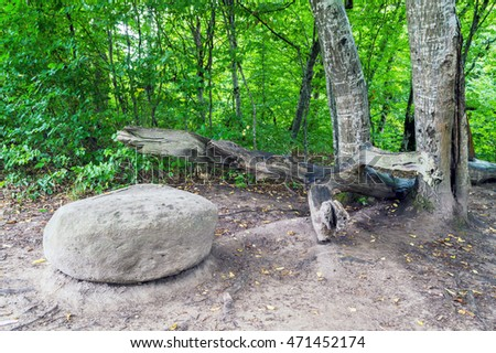 Big wild natural grey stone and broken tree trunk in green forest