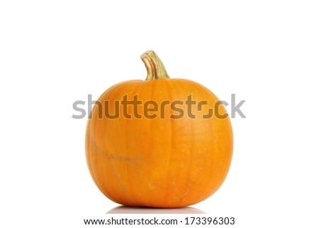 Big yellow pumpkin on white background.
