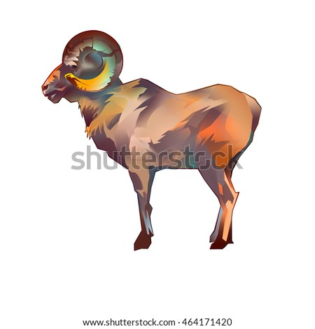 bighorn sheep drawing on a white background