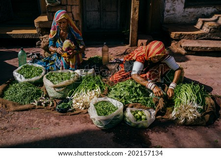 BIKANER - MARCH 22 : women selling vegetables in the street on March 22 , 2014 in Bikaner,India