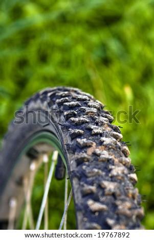 Bike tire - stock photo