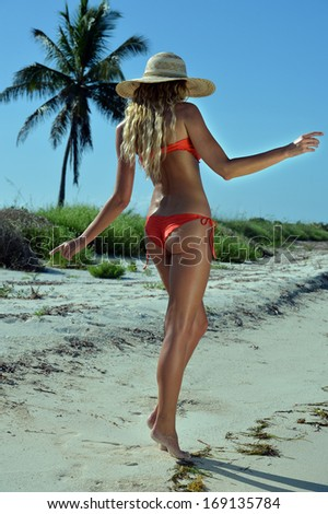 Bikini model posing sexy in front of palm tree at tropical beach location - stock photo