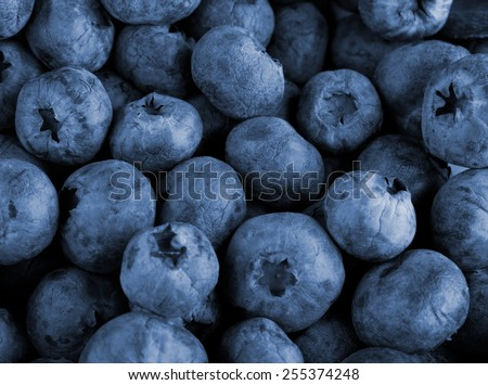 Bilberry berries close up as a background for design - stock photo