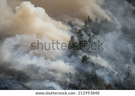 Billowing smoke from California forest fire. Lodge Fire, Mendocino County, August 2014. - stock photo