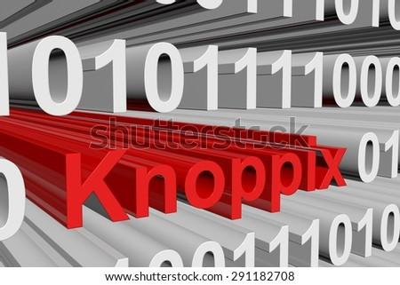 binary code Knoppix - stock photo