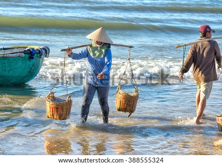 Binh Thuan, Vietnam - January 21st, 2016: Woman carrying two baskets strenuous anchovies baskets on shoulder alignment double beach morning to market processing fishing village of Binh Thuan, Vietnam