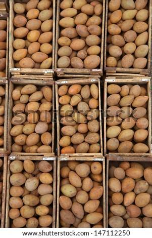 Bins of fresh Sapota fruits in the market - stock photo