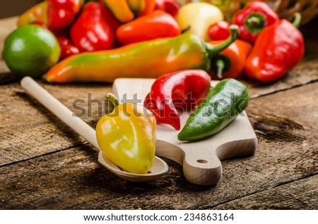 Bio peppers from the garden, various shapes and types - stock photo
