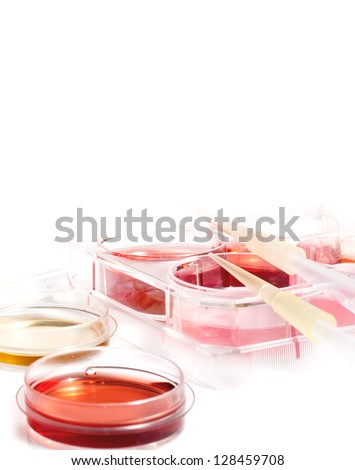 Biochemistry of blood tests. Cell culture for the biomedical diagnostic. Plastic labware with blood analysis. Equipment of scientific lab for experiments and research. - stock photo