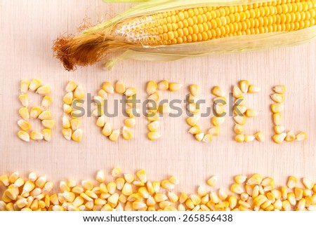 Biofuel word with corn maize and grains - stock photo
