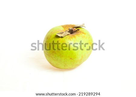 Biological green apple fruits isolated on white background