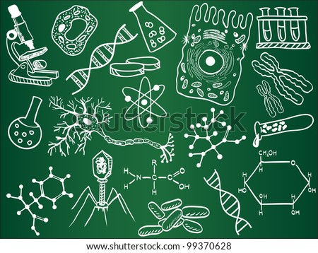 Biology sketches on school board illustration - stock photo