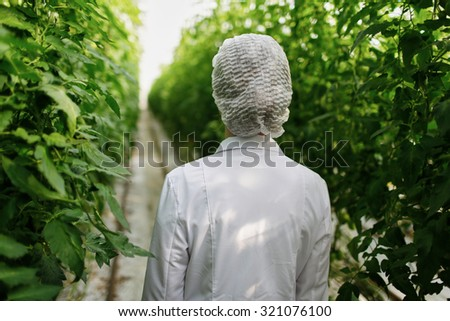 Biotechnology woman engineer examining plant leaf for disease - stock photo