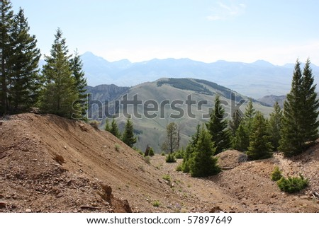 Birch Creek in Salmon National Forest, Idaho - stock photo