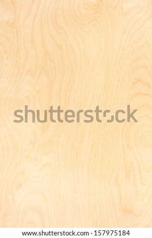 Birch plywood. High-detailed wood texture series. - stock photo
