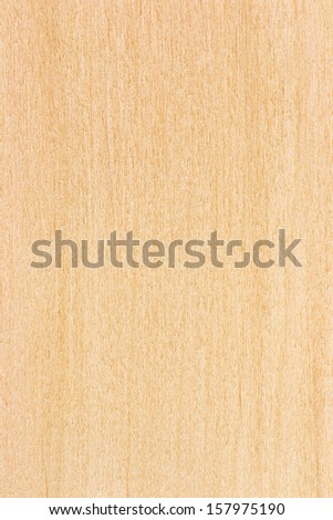 Birch plywood. High-detailed wood texture series.